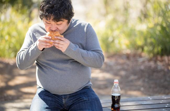 肥満 メタボ 勃起力低下