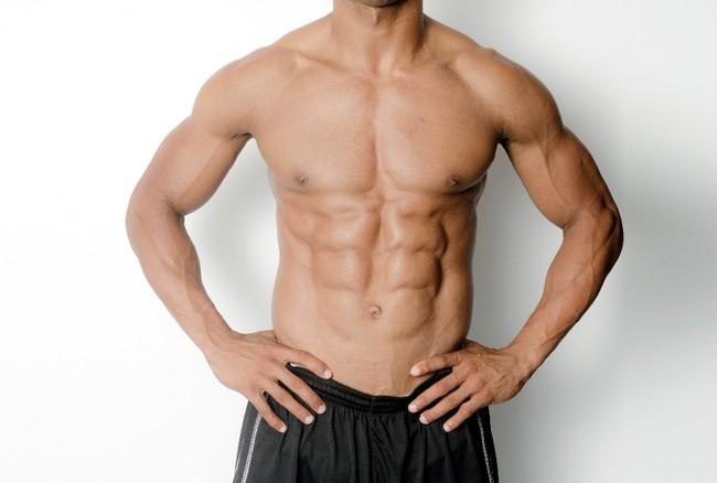 テストステロン 筋肉質