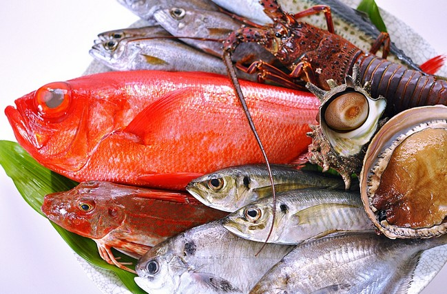アルギニン 魚介類