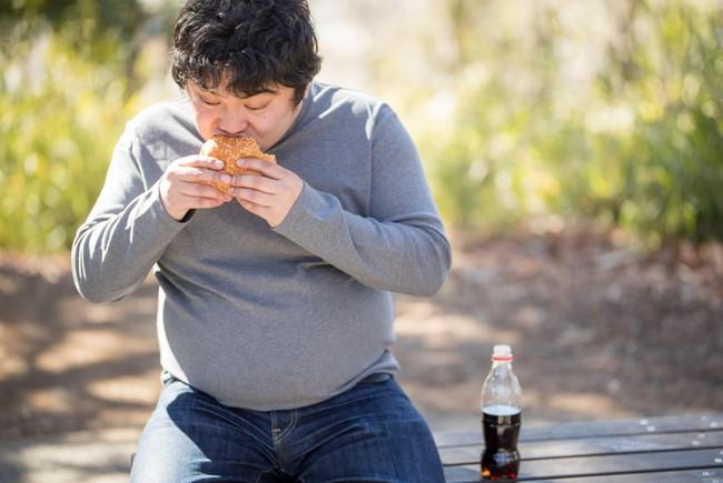 食生活の乱れ 男性ホルモン