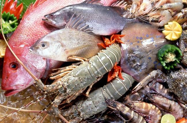 魚介類 アルギニン