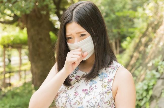 霊芝 花粉症