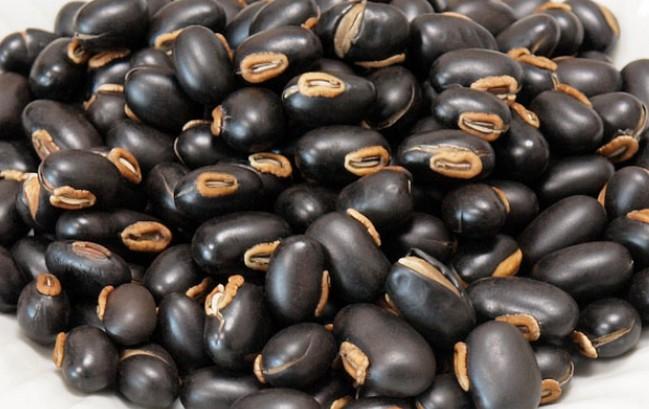 ムクナ豆 摂取方法