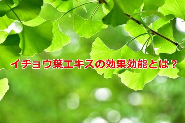 イチョウ葉エキス 効果 効能