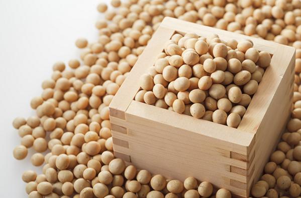 サポニン 食品 大豆