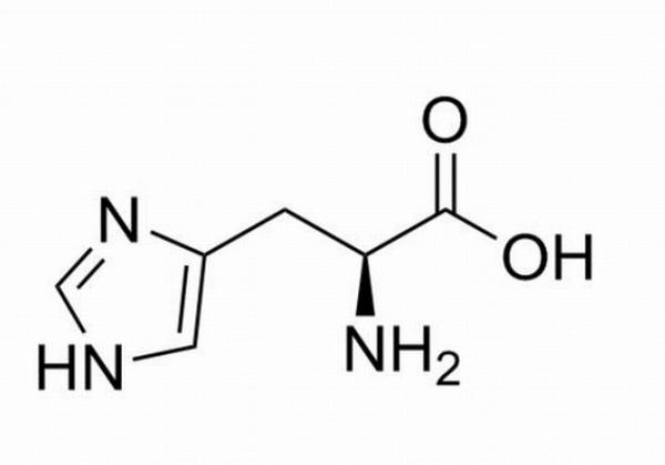 ヒスチジン 効果 成分