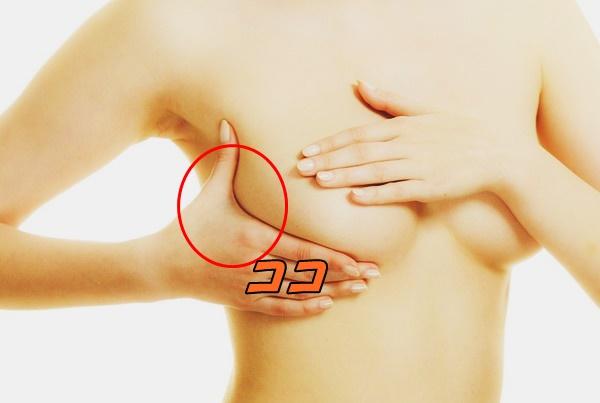 スペンス乳腺 場所