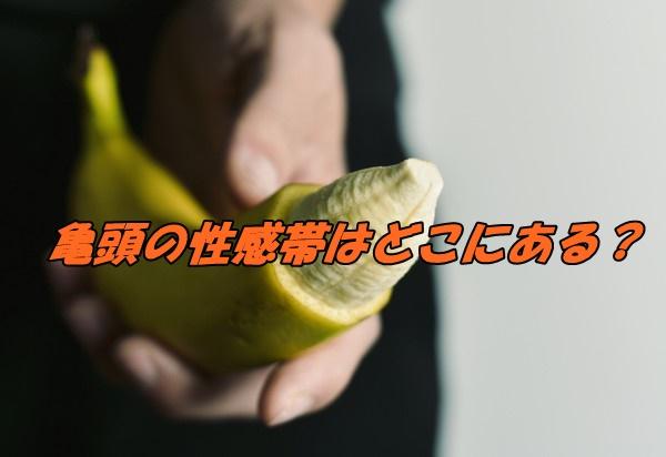 亀頭 性感帯