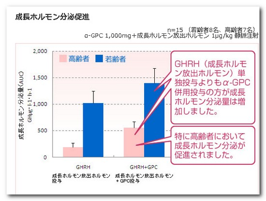 α-GPC 成長ホルモン