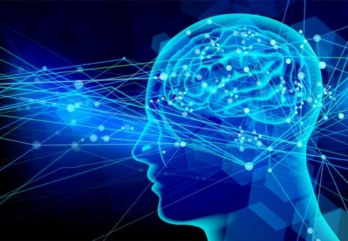脳内ホルモン